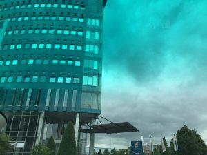 EDE Wuppertal - Multirollo® - Sonnenschutz und Blendschutz im Bürogebäude
